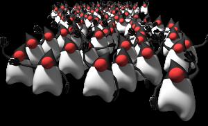 OpenJDK Community
