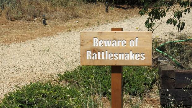 snake-warning_9391539040_o